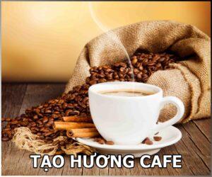 TẠO HƯƠNG CAFE